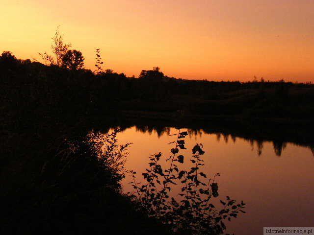 C. D zachodzik słońca
