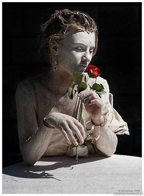 Portret z czerwona różą