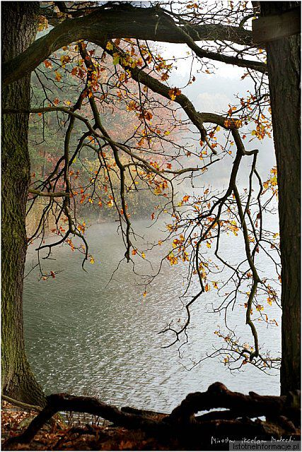 Koniec Jesieni