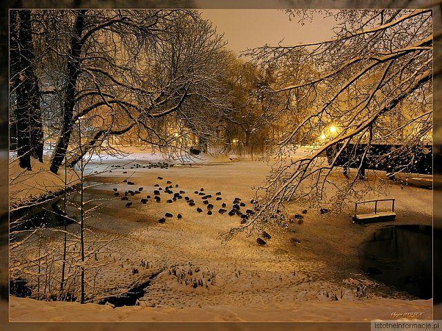 Pejzaż zimowy 2