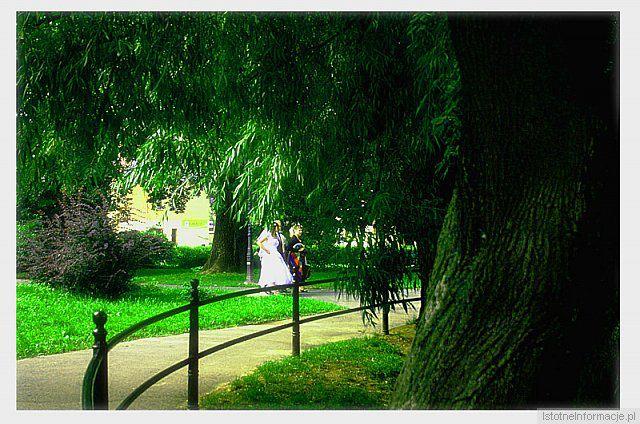 Niedzielne popołudnie w parku z-index: 0