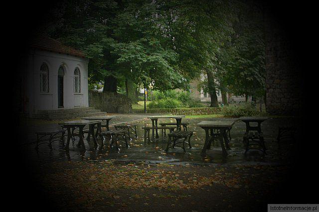 Deszcz w parku z-index: 0