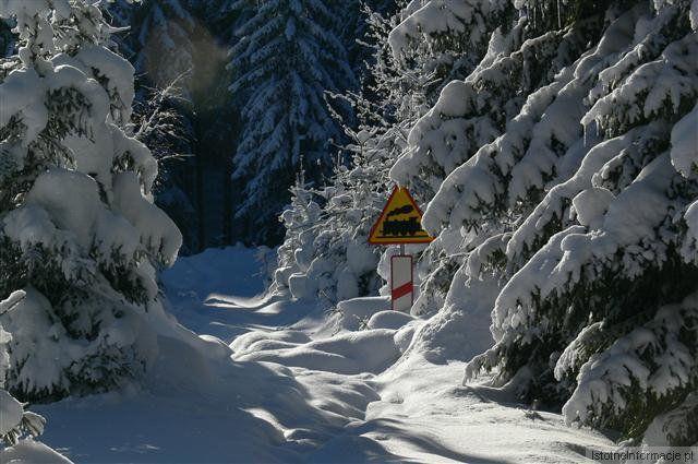 Zima 2010 z-index: 0