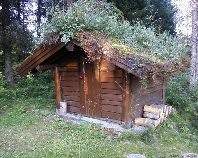 Leśny domek z-index: 0