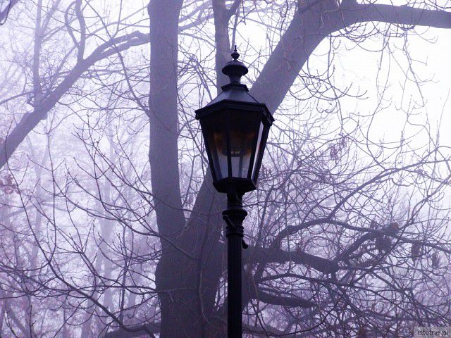 Jesienna latarnia z-index: 0