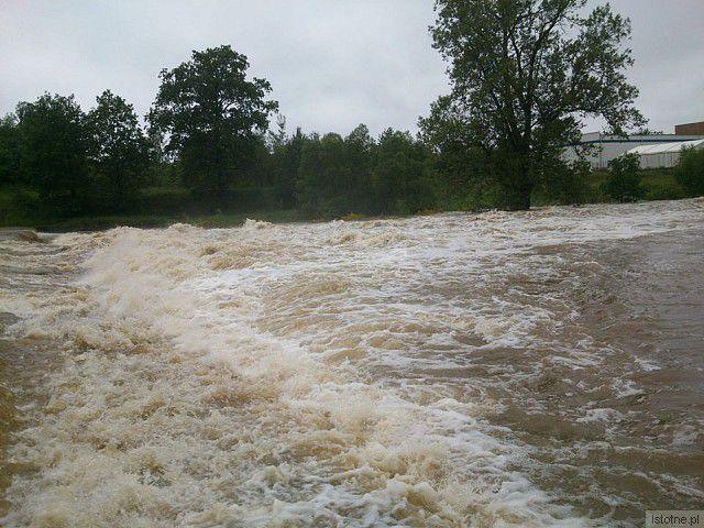 Rzeka Bóbr. Okolice wiaduktu. Zdjęcie z 4 czerwca 2013 roku.