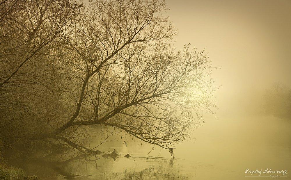 Rzeka Bóbr w Bolesławcu – Poranne listopadowe klimaty :) z-index: 0