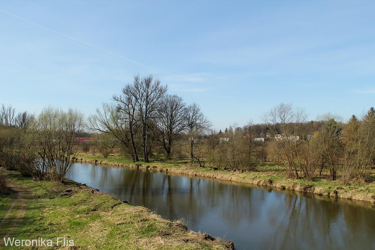 Smutny widok z mostu na rzekę Bóbr (po wycince drzew) z-index: 0