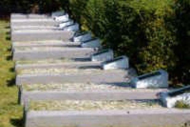 Wyremontowano cmentarz Żołnierzy Armii Radzieckiej