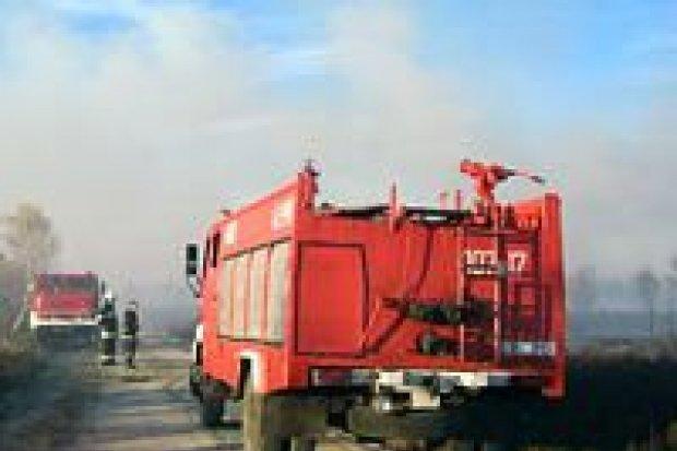 Strażacy ugasili pożar na poligonie w Świętoszowie