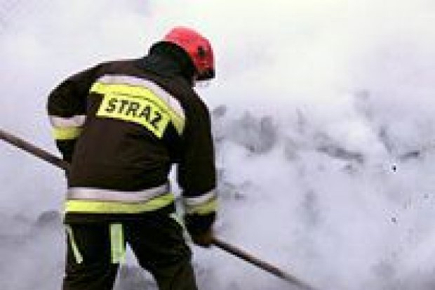 9 strażaków gasiło pożar na terenie byłego Rulimpeksu