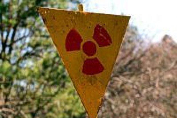 Bolesławianie w Czarnobylu