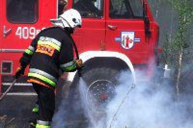 Pożar nieużytków koło Łazisk