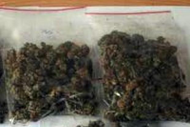 Wpadli z marihuaną