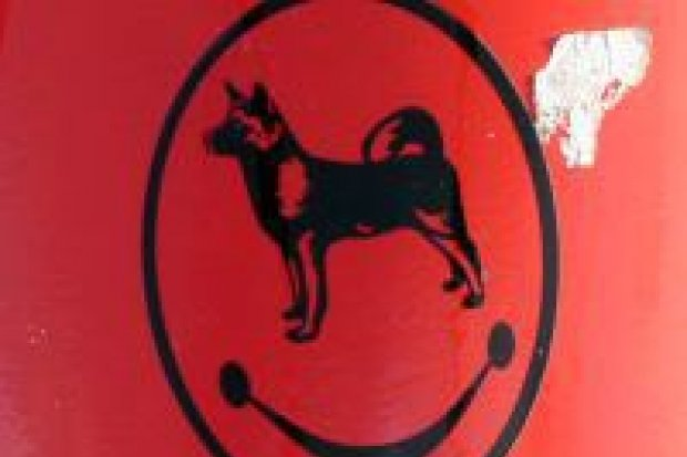 Psie odchody w całym mieście