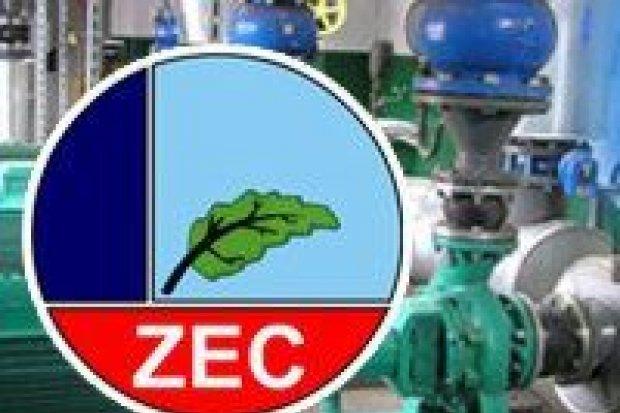 ZEC – bliskie spotkanie z prywatyzacją