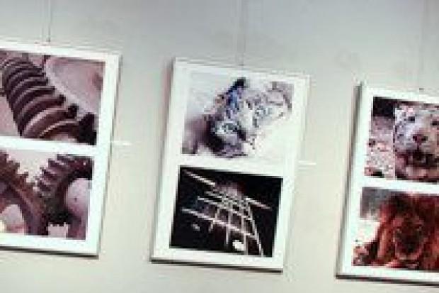 Wystawa Obiektywnych w galerii Długiej