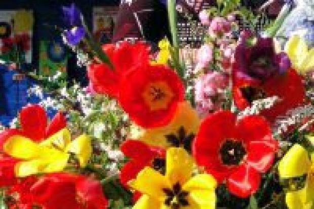 Za nami festyn kwiatowy w Łaziskach