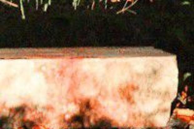Krwawa bójka w okolicach Vegi