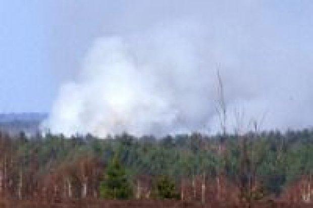 Płonie las na poligonie