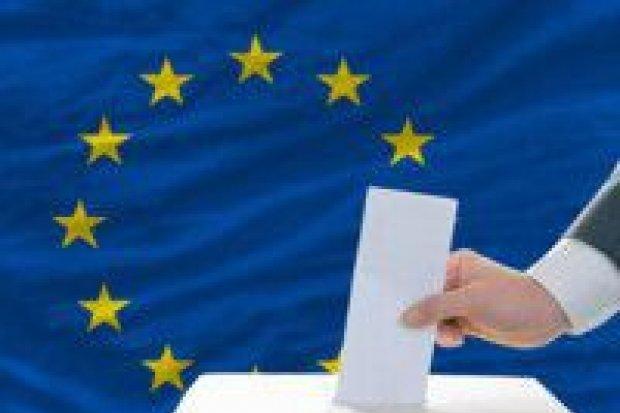 Majowe wybory do Europarlamentu egzaminem Polaków