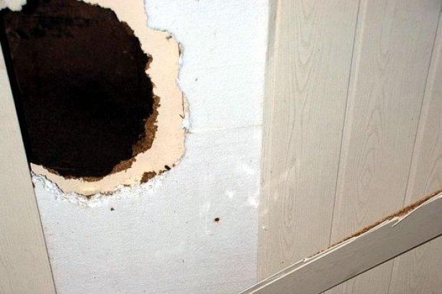 Włamywacze wybili otwór w ścianie sklepu. 43-latek schował się... w zamrażarce!