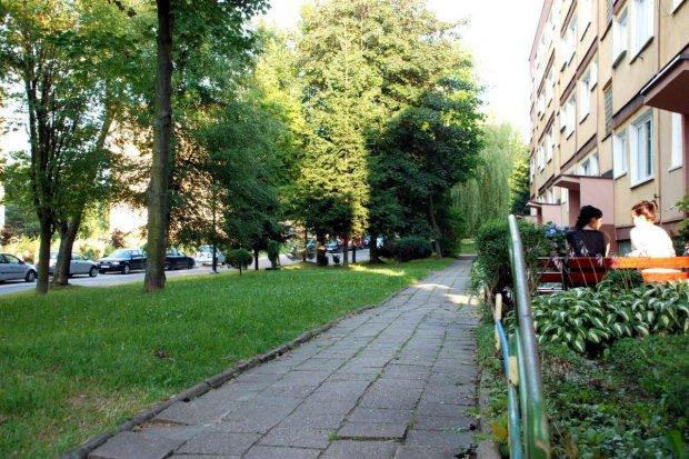 Jesienne inwestycje w Zgorzelcu
