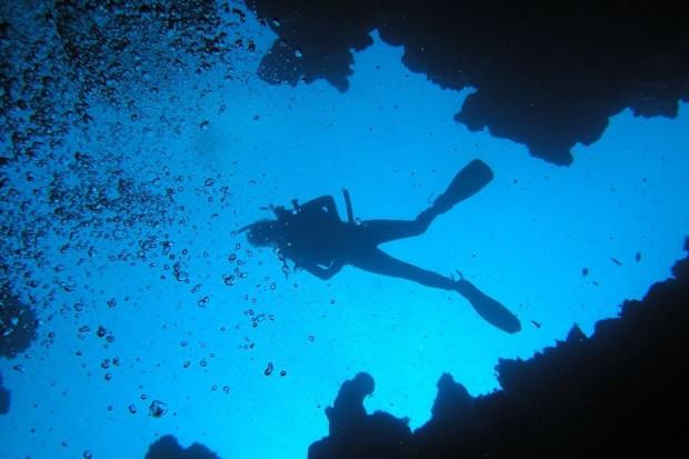 Prestiżowy konkurs dla płetwonurków zajmujących się podwodną fotografią i wideografią