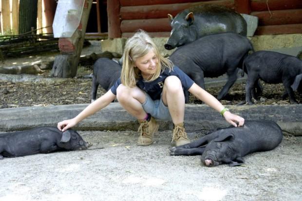 Bliskie spotkania ze zwierzętami w Naszym Zoo