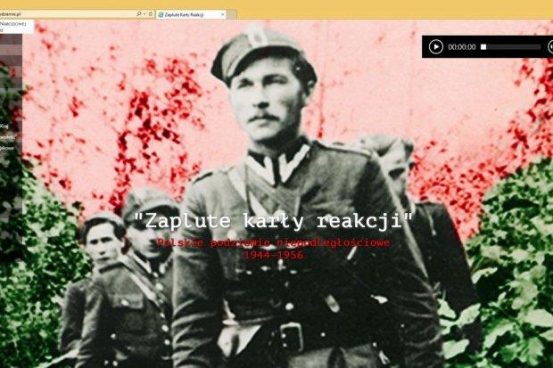 Ruszyła strona internetowa IPN o polskim podziemiu niepodległościowym