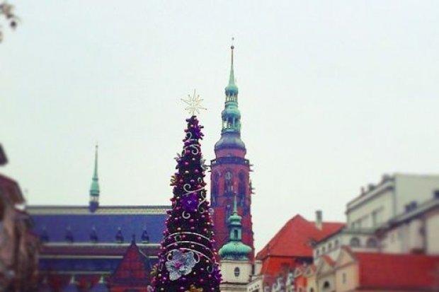 Od soboty Legnica w świątecznej szacie. Będą świetliste premiery