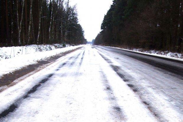 Dwa auta w rowie na drodze pod Bolesławcem