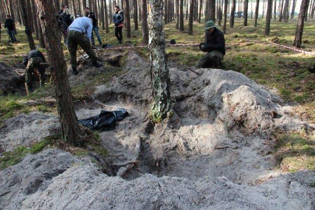 Bolesławieccy muzealnicy poszukiwali szczątków samolotu
