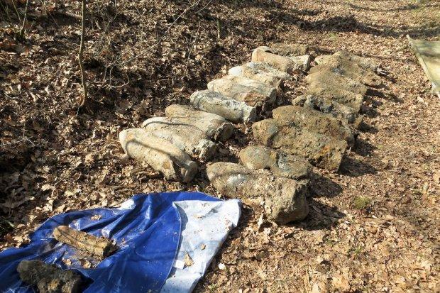 Niewybuchy w Dobrej – około 17 bomb lotniczych w lesie