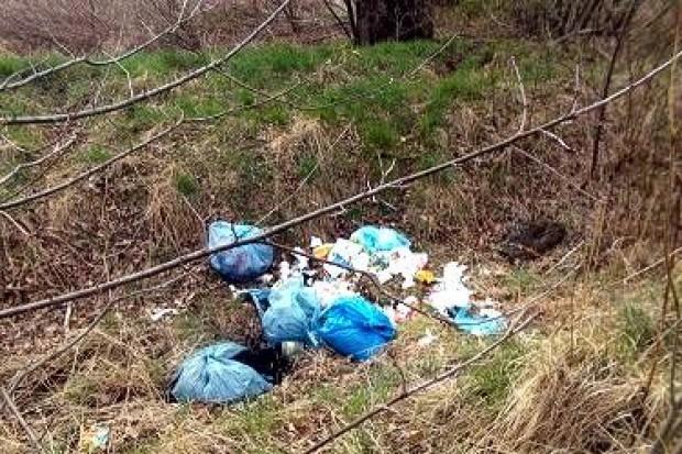 500 zł mandatu za dzikie wysypisko śmieci
