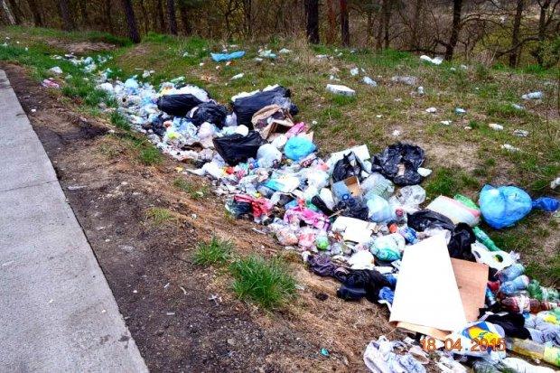 Śmieci przy drodze wojewódzkiej