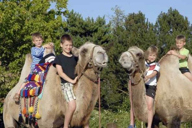 Renciści w rozmiarze XXL w Naszym Zoo