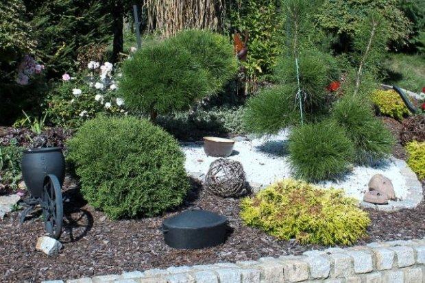 Najpiękniejszy ogród w Starej Rudnej