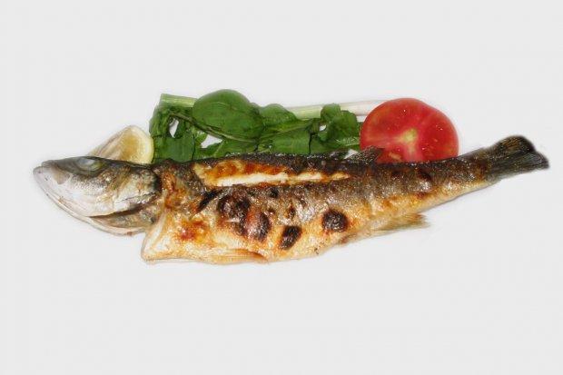 Smaki rybne w Łagowie