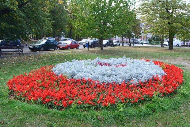Pięknie i patriotycznie na placu Wolności