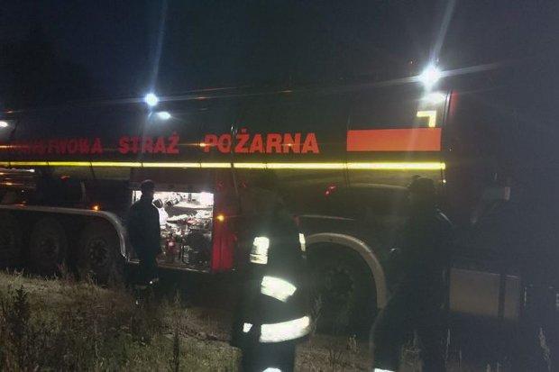 Pożar lasu między Borówkami a Trzebieniem. Spłonęło 1,5 hektara