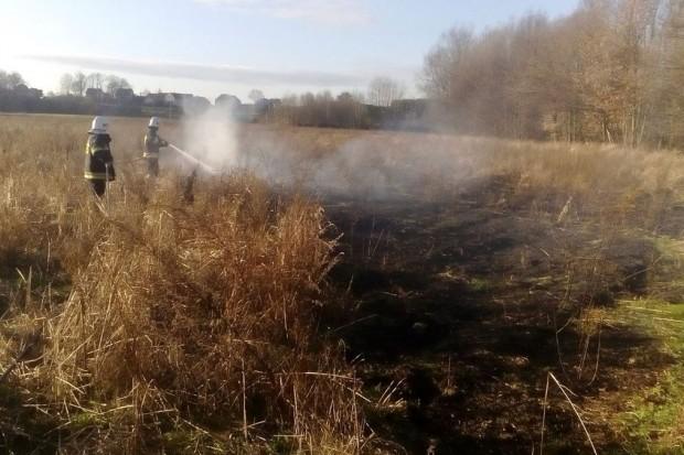Pożar w Tomisławiu (gmina Osiecznica). Prawdopodobnie było to podpalenie