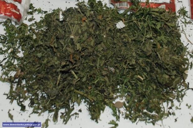 Wpadł z ponad 2 tys. porcji marihuany. Narkotyki trzymał w piwnicy