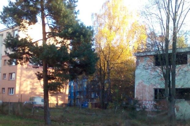 Starosto i wójcie Haniszewski spójrzcie na Osiedle Szczytnica