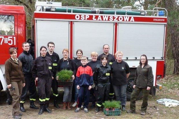 Druhowie z Ławszowej posadzili kilkaset drzew