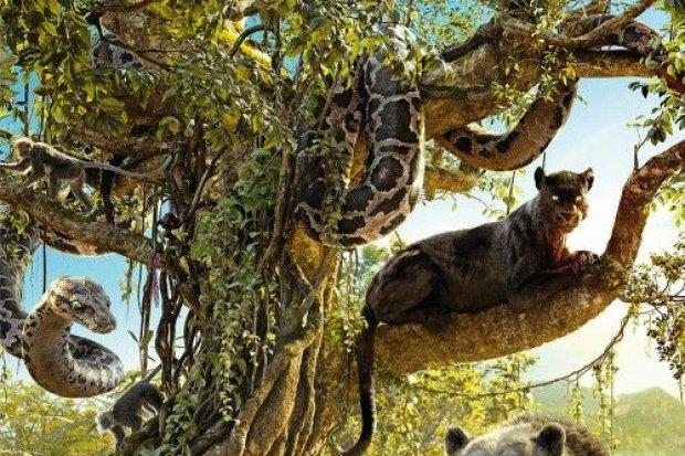 Księga dżungli w kinie Forum