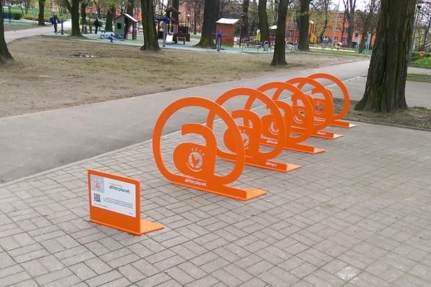 Pięć stojaków rowerowych w parku miejskim przy Tyrankiewiczów