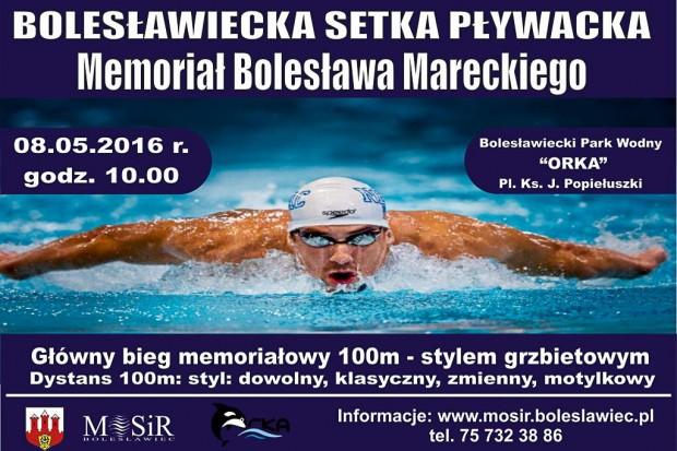 Bolesławiecka Setka Pływacka coraz bliżej