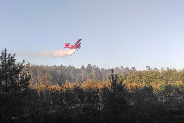 Spłonęło ok. 11 ha lasu