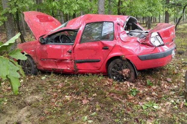 Renault wypadł z drogi i uderzył w drzewo. Jedna osoba ranna